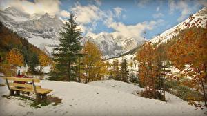 Фотографии Австрия Горы Альпы Ель Снег Скамья Eng Природа