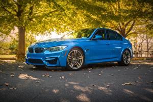 Фотография BMW Голубая Седан F80 М3 машины