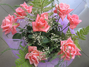 Обои Букеты Розы Розовый Цветы