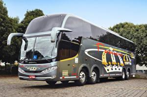 Фотография Автобус Тюнинг 2012-17 Comil Campione HD Автомобили
