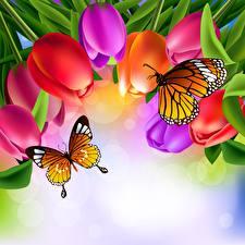 Картинка Бабочки Тюльпаны Данаида монарх Животные