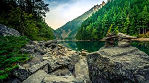 Фотография Канада Парки Горы Озеро Леса Камень Linderman Lake Chilliwack Provincial Park Природа