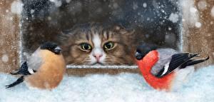 Фото Кошки Птицы Снегирь Взгляд Животные