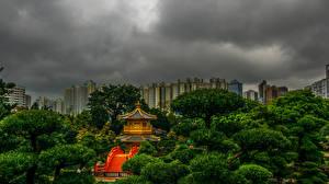 Фотография Китай Гонконг Парки Пагоды Деревья Lan Lian Garden Природа