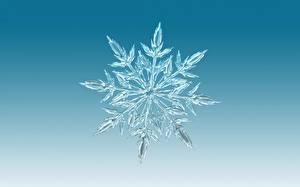 Картинка Вблизи Снежинки