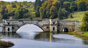 Фото Англия Парк Речка Мосты Осень Blenheim Park Природа