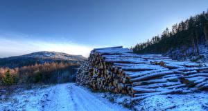 Картинки Англия Зимние Снег Бревна Yorkshire Природа