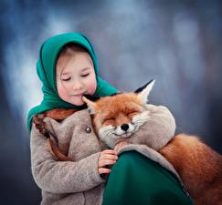 Фото Лисы Девочки Объятие Ребёнок Животные
