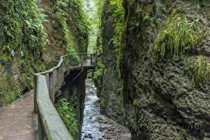 Фотографии Франция Реки Мосты Каньона Скалы Мха Gorges Kakouetta