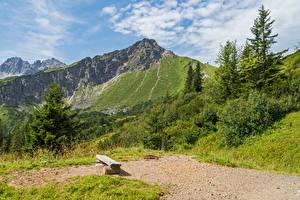 Картинка Германия Горы Бавария Альпы Ель
