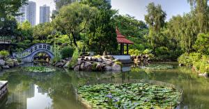 Картинка Гонконг Китай Сады Пруд Мосты Камни Nan Lian Garden Природа
