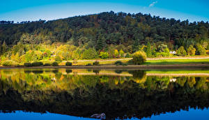 Фотография Ирландия Леса Речка Осенние Отражение Wicklow