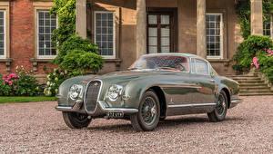 Фотография Jaguar Винтаж Pininfarina Металлик 1954 XK120 SE Coupe Pininfarina машина