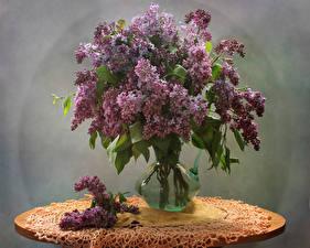 Фото Сирень Стол Ваза Ветвь Цветы