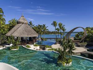 Обои Маврикий Тропики Курорты Берег Плавательный бассейн Пальмы ShangriLa