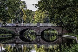 Фотографии Нидерланды Парки Речка Мосты Utrecht Природа