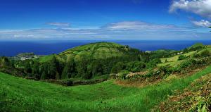 Картинки Португалия Берег Холмы Трава Sao Miguel Azores Природа