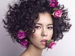 Картинка Розы Шатенка Лицо Волосы Красивые Девушки