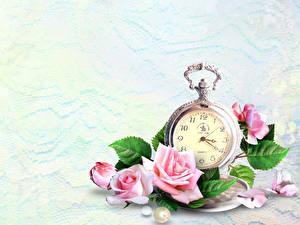Обои Розы Часы Карманные часы Розовый Цветы