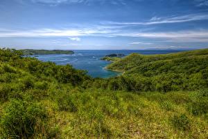 Фотография Россия Берег Залив Трава Primorsky Krai Природа