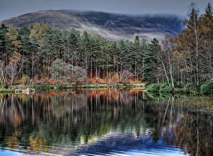 Картинки Шотландия Озеро Леса Glencoe Lochan Природа