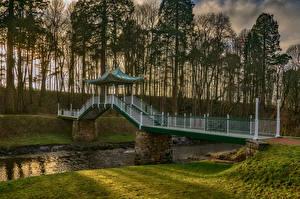 Картинка Шотландия Парки Речка Мосты Вечер Деревья Dumfries House Ayrshire Природа