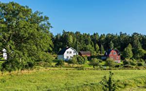 Фотография Швеция Стокгольм Здания Трава Природа