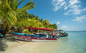 Картинка Тропики Берег Катера Isla Colon Panama