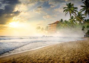 Фотографии Тропический Побережье Волны Туман Песке Пальмы Пляж Природа