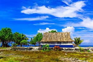 Фотография Тропики Здания Fanning Island Kiribati
