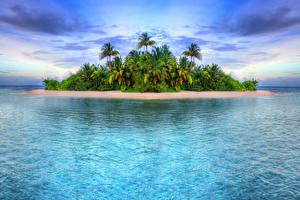 Фото Тропики Море Остров Пальм Природа