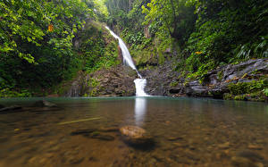 Обои Тропики Водопады Камень Guadeloupe Basse-Terre