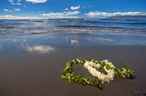 Обои День святого Валентина Побережье Сердце Природа картинки