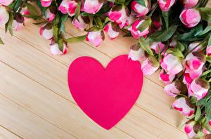 Обои День всех влюблённых Розы Доски Сердце Розовый Цветы