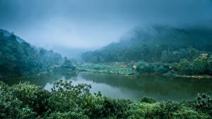 Картинка Вьетнам Озеро Леса Туман Природа