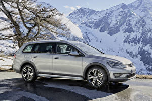 Картинка Volkswagen Серый Металлик 2017-18 Golf Alltrack Worldwide Машины