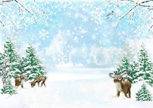 Обои Зима Олени Детеныши Снег Ель Природа