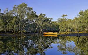 Обои Австралия Реки Лодки Деревья Отражение Brooklyn Hawkesbury River Природа