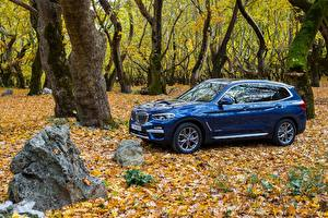 Обои БМВ Металлик Синий 2017-18 X3 xDrive20d xLine Worldwide Автомобили