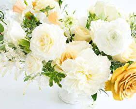 Картинки Букеты Розы Пионы Белый фон Белый Цветы