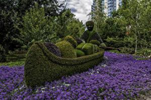 Фото Канада Парки Лодки Мужчины Дизайн Ottawa Ontario Природа