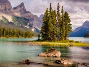 Картинки Канада Парки Горы Озеро Камень Пейзаж Джаспер парк Деревья Природа