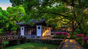 Фото Китай Парки Пагоды Wuxi Jiangsu Природа