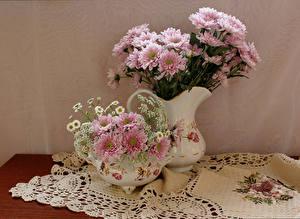Обои Хризантемы Ваза Розовый Цветы