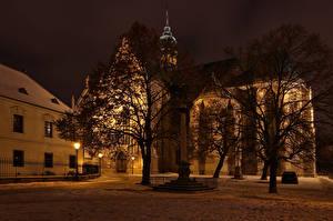 Фотографии Чехия Здания Храмы Ночь Деревья Уличные фонари Brno Города