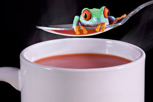 Картинка Напитки Лягушки Ложка