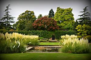 Обои Англия Парки Лондон King George V Memorial Garden Природа