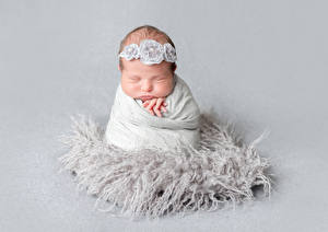 Фотографии Серый фон Грудной ребёнок Спящий Ребёнок