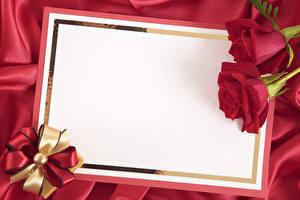 Фотографии Праздники Розы Шаблон поздравительной открытки Вдвоем Лист бумаги Бантик Цветы