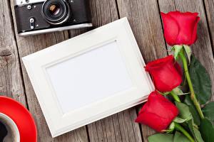 Фотография Праздники Розы Шаблон поздравительной открытки Доски Красный Фотокамера Цветы